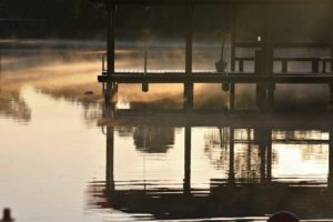 Misty Morning Dock Mike Coltman